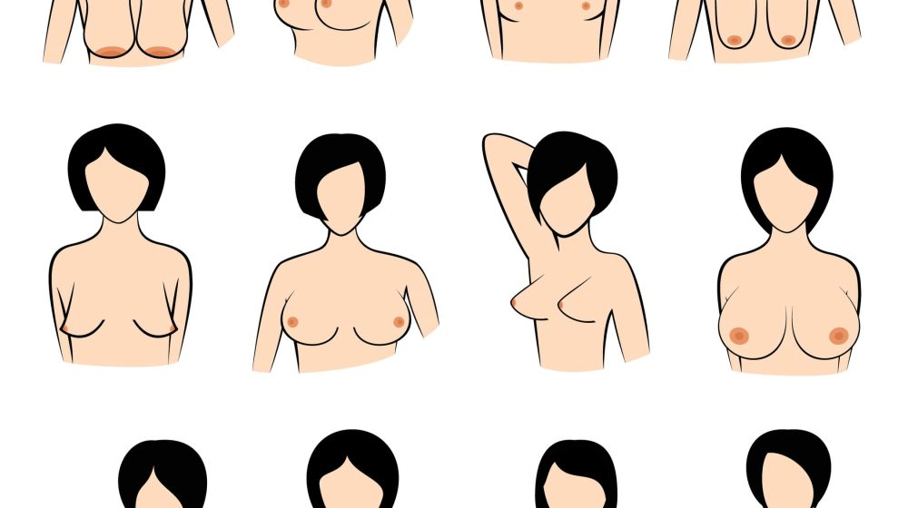 different boob shapes